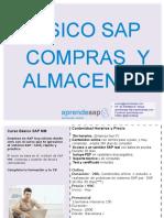 Aprendesap Curso Básico SAP MM Compras y Almacenes