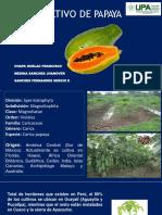 cultivo de papaya chapa.pdf