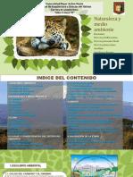 Naturaleza y Medio Ambiente Powerpoint 2