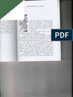 el ruiseñor y la rosa pdf