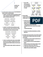 Las Actividades Económicas.docx