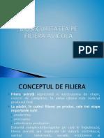 11 bunăstare,concept.pptx