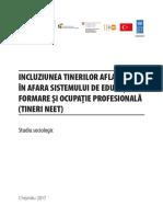 Tinerii NEET in Republica Moldova.pdf