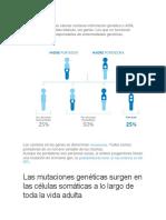 mutaciones.docx