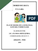 PLAN DE MEJORA  DE TBC 2018.docx