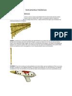 Instrumentos Folclóricos 5°