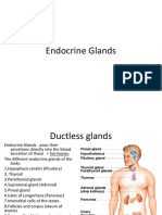 Endocrine - Pituitary Gland
