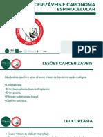 LIGA LADO - Lesões Cancerizáveis e Carcinoma Espinocelular