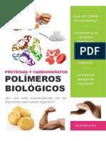 Los Polimeros Biologicos y Su Importancia