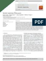 Metabolic Engineering of Pichia Pastoris (1)