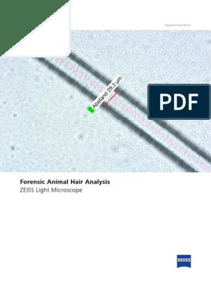 Zeiss Application Note Forensic Animal Hair Analysis Fur Hair