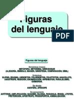 Programa de Teoria Literaria 1