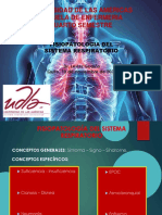 Fisiopatologia Del Sistema Respiratorio