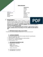 PERICIA PSICOLÓGICA DAÑO MORAL.docx