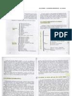 ana-atorresi-gros period.pdf