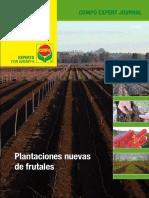 Journal_Plantaciones_2010_final.pdf