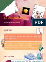 El Organigrama...