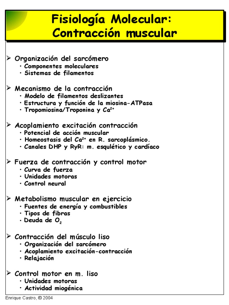 Musculo2004 Pdf Contracción Muscular Músculo