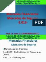 2.3.b FCE ADM.fin. Mercado de Seguros 2013
