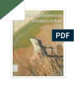 Ambientes de Sedimentação Siliciclástica do Brasil.pdf