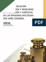 INFORME AFECTADOS DAÑO CEREBRAL.pdf
