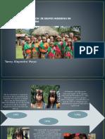 indigenas diversidad.pptx
