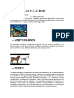 ANIMALES ACUÁTICOS.docx