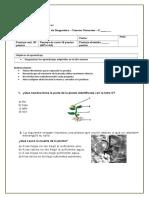 Diagnóstico Ciencias 4º.doc