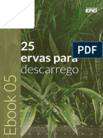 ebook-gratuito-Rt-Dia-05.pdf