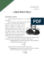 Relatia R.Mayer.docx