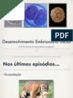 aula-4-desenvolvimento-embrionc3a1rio.pdf