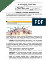 Taller Sobre Membrana Celular Para Imprimirla Celula (1)