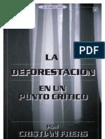 La deforestación en un punto crítico_CF