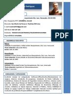 Curriculum Luis Arturo