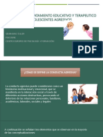 CC_ONDUCTA AGRESIVA_2016.pdf