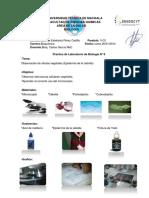 practicasdelaboratorios-140126125341-phpapp02