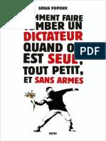 Comment Faire Tomber Un Dictateur Quand on Est Seul Tout Petit Et Sans Armes - Popovic, Srdja