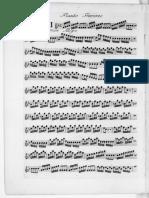 IMSLP338363-PMLP459357-vivaldi_rv433_1728_flauta.pdf
