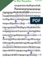 MIX FLOR PUCARINA - Huayno Centro.pdf