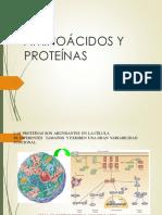 Aminoacidos y Proteinas (2)
