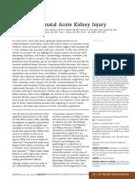neonatal AKI.pdf