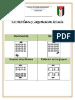 Organizacion de Aula - DUA.docx