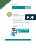 Manual etapa productiva(1).docx