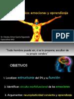 Sistema límbico, emociones y aprendizaje, Ppt. Autor