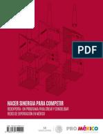 hacer-sinergia-para-competir.pdf