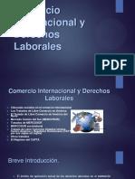 Comercio Internacional y Derechos Laborales JGGG310