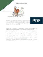 ÁNGULOS DWELL.docx