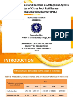 Exploration of Yeast and Bacteria as Antagonist Agent Candidate of Citrus Foot Rot Disease (Botryodplodia theobromae (Pat.))