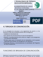 TEMAS 4.7 Y 4.8.pptx