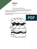 Grafico Sandwich